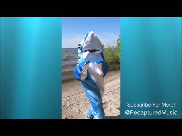 Sharkira - Hips Don't Lie (Shark-ira)