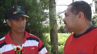 preview picture of video 'REPORTAJE AL JARDIN FLORES DE JARABACOA'
