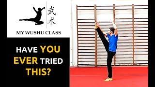 Wushu Front Slap Kick Tutorial - Danpaijiao