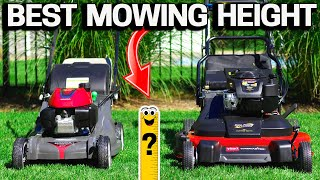 PERFECT Mowing Height for your LAWN - Cutting too low?