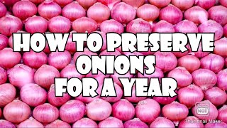 How to preserve onions for long time   How to store onions for a year   Best way to store onions