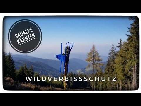 Wildverbiss Manchetten gegen Winterverbiss, Mechanischer Verbissschutz