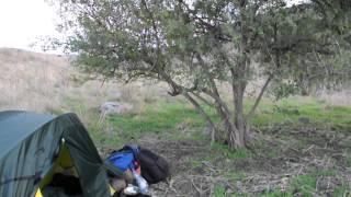preview picture of video '22 ноября 2012. Израиль. Голанские высоты. Крики животных на закате'