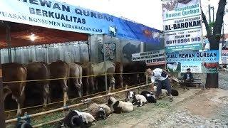 Penjual Hewan Kurban Keluhkan Lesunya Penjualan