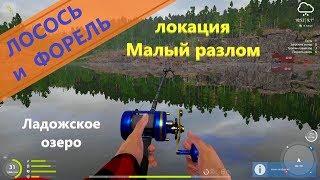 Русская рыбалка 4 - Ладожское озеро - Форель и лосось