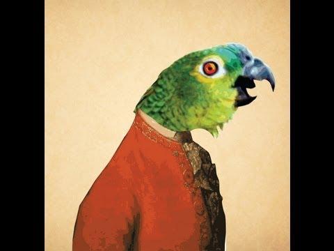całowanie papugi randki