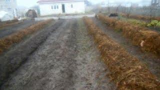 Что сделать,чтобы огород сам себя удобрял во время зимы