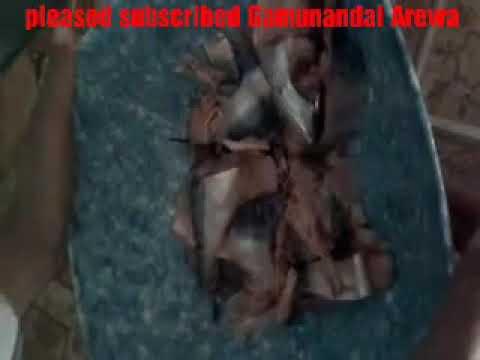 Kalli wani kifin roba da aka samu a kano