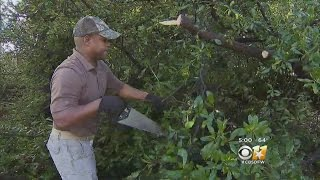 Homeowners, Business Owners Cleaning Up After Sunday Night Storms