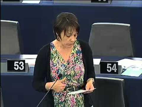 Intervention de Sylvie Guillaume dans le débat sur l'organisation des élections européennes de 20