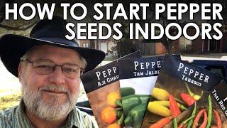 How to Start Pepper Seeds Indoors || Black Gumbo