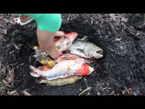 BURYING MY $25,000 DOLLAR FISH COLLECTION!!