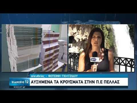 Νομός Πέλλας   Πρόταση Δημάρχων να μην ανοίξουν αύριο τα σχολεία   13/09/2020   ΕΡΤ