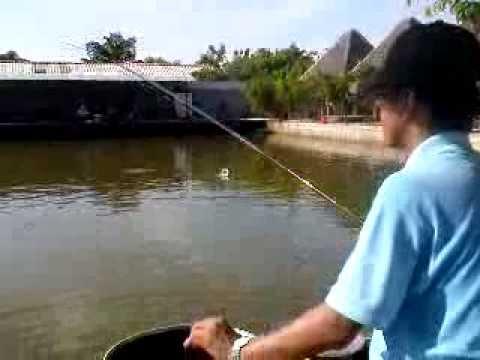 Huỳnh Minh Khoa - Hồ Goldfish 2013
