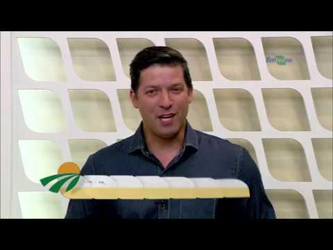 Dia de Campo na TV - Galinha Embrapa 051: opção para agricultura familiar