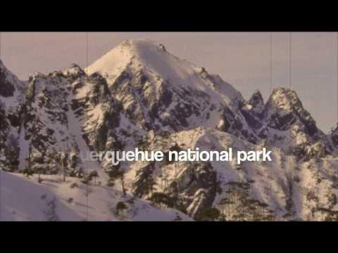 Video avEtnico Eco Hostel