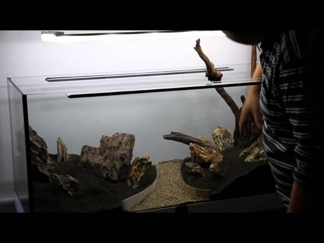 Aquascaping - Making Layout of Mirkwood tank