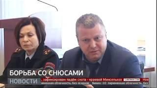 Борьба со снюсами. Новости Губерния 24/01/2020