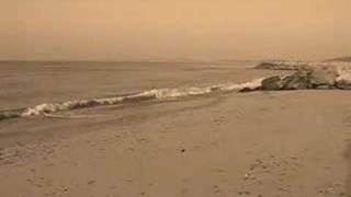 Dove Grey Sands Feeder