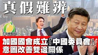 20191211F 【真假難辨】 加國國會成立「中國委員會」意圖改善雙邊關係   芒向快報