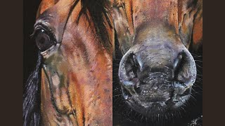How To Paint A Realistic Horse | Portrait Painting | Time-lapse Acrylic Painting