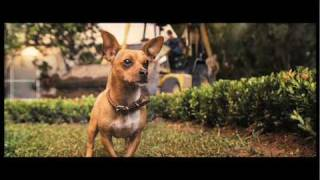 Beverly Hills Chihuahua Trailer Image