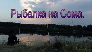Рыбалка на Сома Донкой с берега. Беларусь.