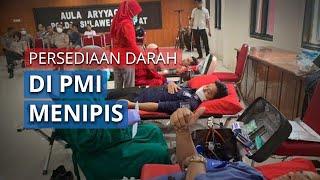 Persediaan Darah di PMI Makassar Menipis saat Pandemi Covid-19