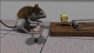 Blender 3D short animation