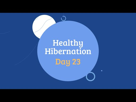 Healthy Hibernation Cover Image Day 23.