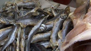 Поставщики рыбы и морепродуктов Москва