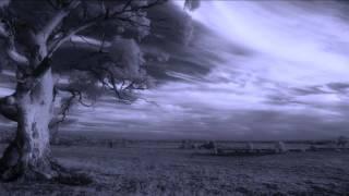 Richard Durand - Ancient Garden (Original Extended Mix)
