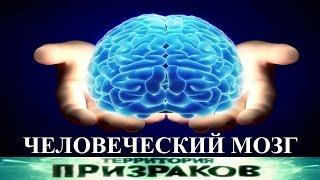 Человеческий мозг. Территория Призраков.  Серия 89.