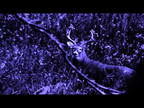 Video of Hunt Predictor Hunting Times