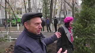 Новости (2018 октябрь) Высадка елочек кафедрой Эксплуатация и ремонт автомобилей