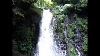 熊本県観光白糸の滝