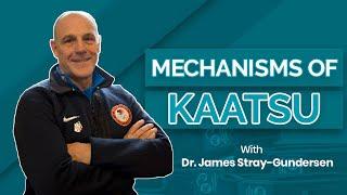 Mechanisms of Kaatsu Training
