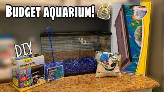 DIY Fish AQUARIUM on a BUDGET!!