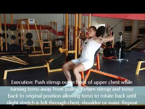 Cable Twisting Chest Press with Body Tester