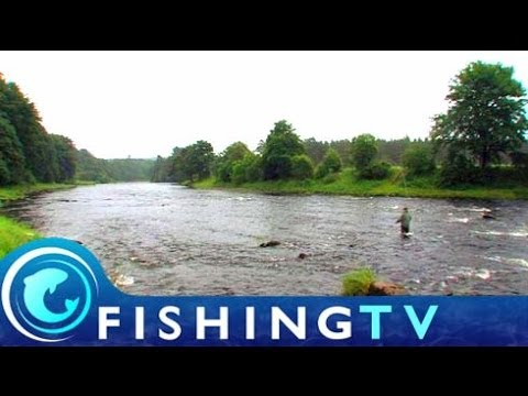 Fishing on the Lower Dess beat of river Dee in Scotland