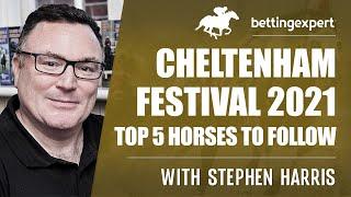 Cheltenham festival betting directory binary options strategy price action analysis