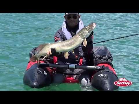 Linverno pescando come trovare il pesce