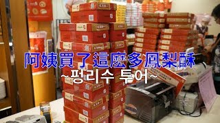 韓國人在臺灣💙我阿姨買了超多鳳梨酥 대만여행Vlog 펑리수 투어, 스린야시장