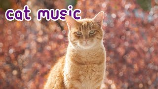 15 HOURS OF RELAXING CAT MUSIC! Feline Therapy 2019