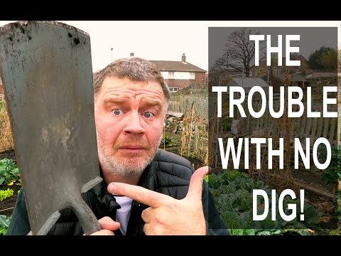 The TROUBLE With No Dig Gardening is...