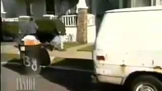 Ржач до слез!!! Летающий кот как белка летяга Юмор! Прикол! Смех