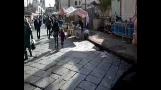 preview picture of video 'Madonna dell'Arco _ Lunedì in Albis 01-04-2013'