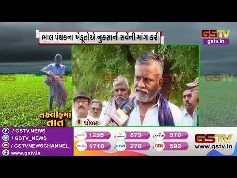 Ahmedabad : Dholka ના ભાલ પંથકને લીલો દુષ્કાળગ્રસ્ત જાહેર કરવાની માંગ | Gstv Gujarati News