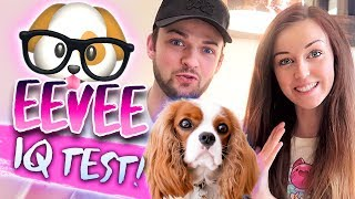 🐶🤓TESTING OUR DOG'S INTELLIGENCE 🤓🐶 (Doggy IQ Test!)