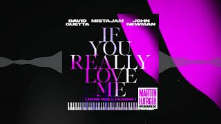 David Guetta x MistaJam x John Newman - If You Really Love Me [Marten Hørger Remix]